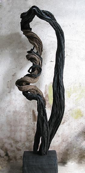 Alban LANORE Sculpture Contemporaine V&233g&233tale Liane Souche